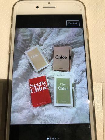 Chloe ziel ……………………………………..