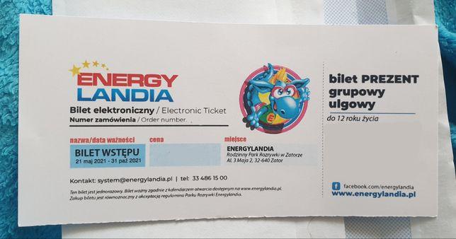 Bilet do Enerylandii do 12 r.ż. bez wzrostu ulgowy