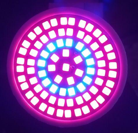 Фитолампа 80 LED