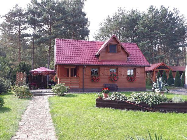 Dom drewniany całoroczny Bledzew