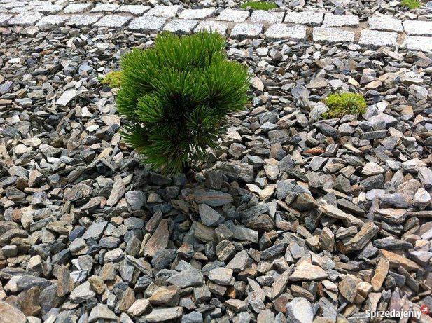 Kamień gnejsowy kora kamienna kamień ogrodowy kamień ozdobny gnejs