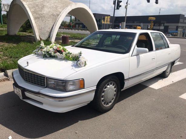 Аренда. Свадьба. Весілля. Авто с водителем
