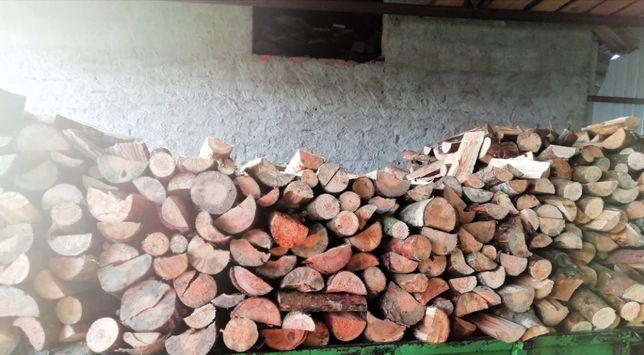 drzewo opalowe drewno