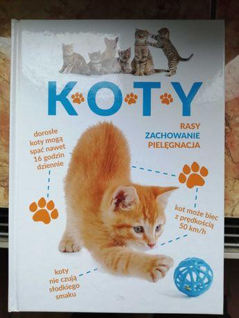 """Książka """"Koty-rasy, zachowanie, pielęgnacja"""""""