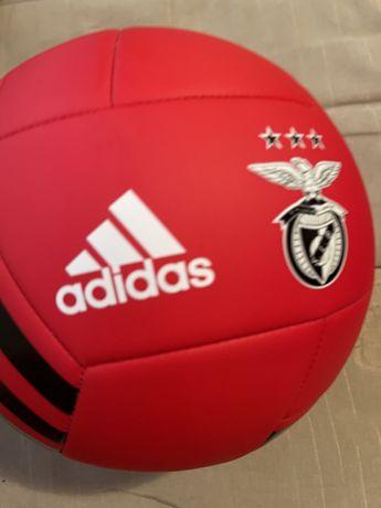 Bola de futebol do benfica