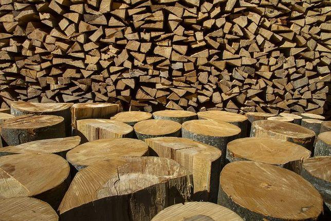 Продам дрова для опалення.