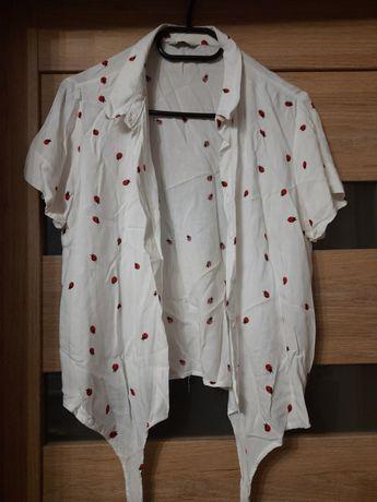 Koszula w biedronki