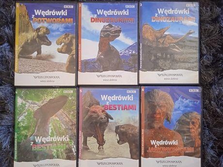 6 płyt dinozaurach i nie tylko