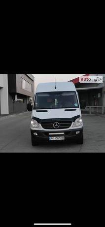 Mercedes-Benz Sprinter 313 груз, 2012