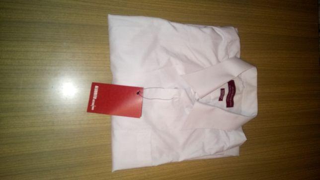 Koszula męska z krutkim rękawem