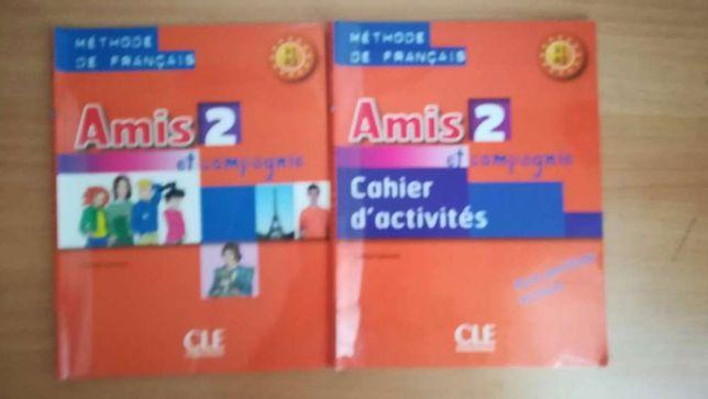 Manual escolar,livro escolar para 8° ano, Amis 2.Francês.