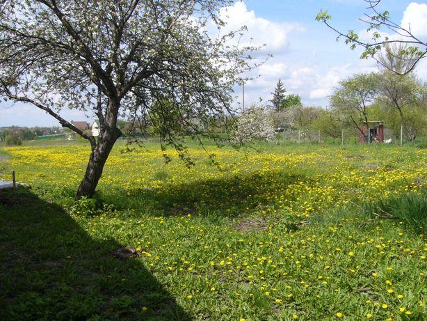Участок 40 соток земли в Ковалевке