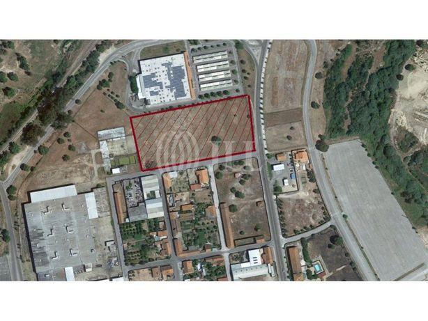 Terreno para construção, em Ponte Sor, Portalegre, Alentejo