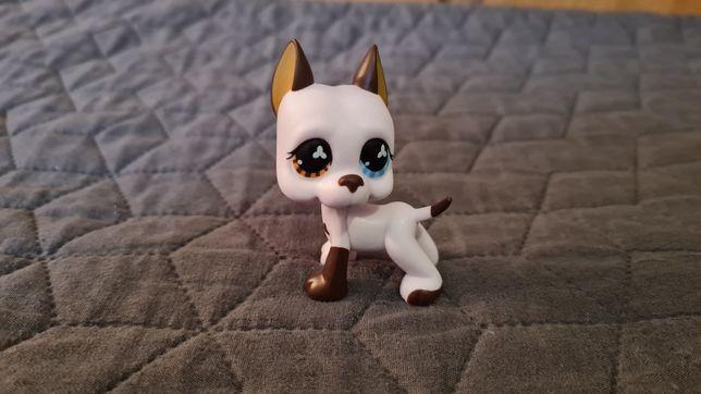 Lps dog #577 biały dwukolorowe oczy Unikat