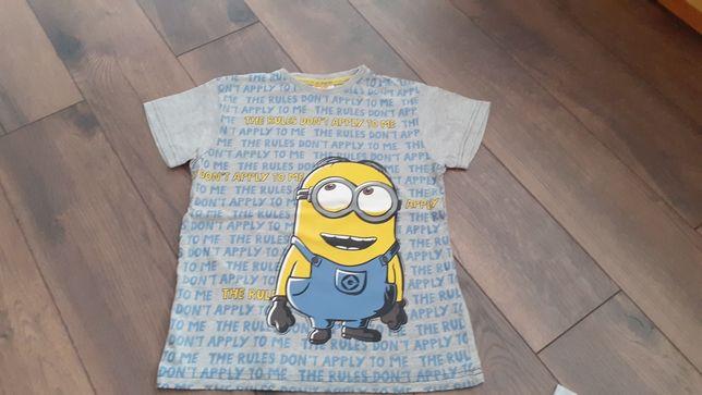 Koszulka t-shirt  Minionek 134