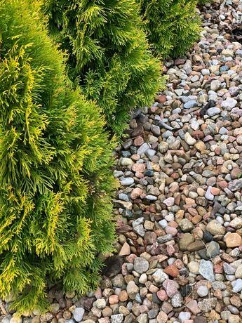 Kamień ogrodowy dekoracyjny otoczak 16-32mm
