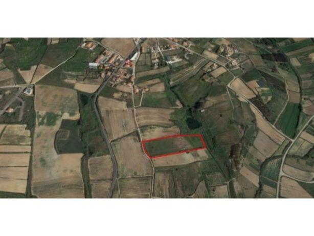 Terreno agrícola, perto de Lourinhã