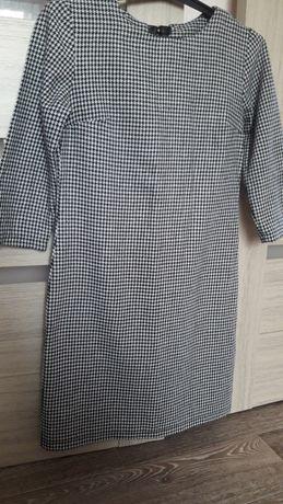 Плаття із гарною спинкою