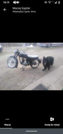 Motor wleska 125
