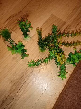 Sprzedam rośliny sztuczne.