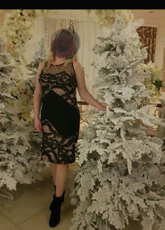 Плаття нарядне fervente 48, 50