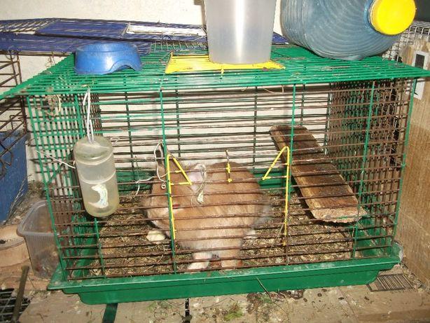 Продам кліткі б/в для декоративних кроликів, шиншил, морськіх свинок.