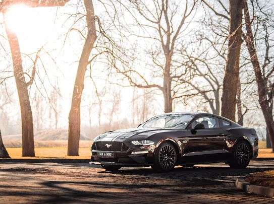 Auto do ślubu, samochód ślubny Ford Mustang GT 5.0 /BMW 7 limuzyna