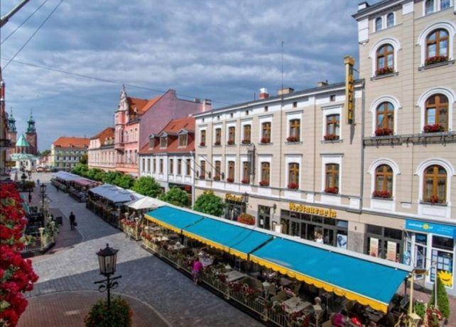 Lokal handlowo/użytkowy deptak Gniezno