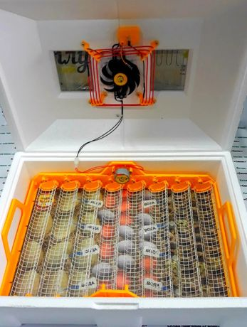 Инкубатор с авто переворотом на 72 яйца теплуша тен