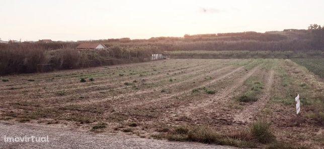 Terreno Agrícola em Lourinhã