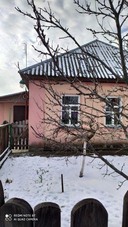 Дом в с. Свидивок, центр