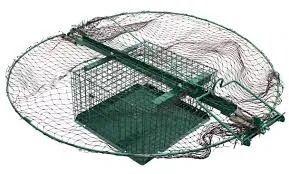 Żywołapka, klatka na jastrzębia pułapka na ptaki drapieżne Nebrowo Wielkie - image 1