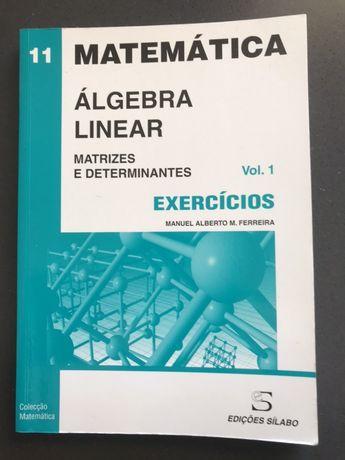 Álgebra Linear - Volume 1