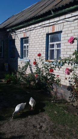 Киевская обл полеский р н с Раговка