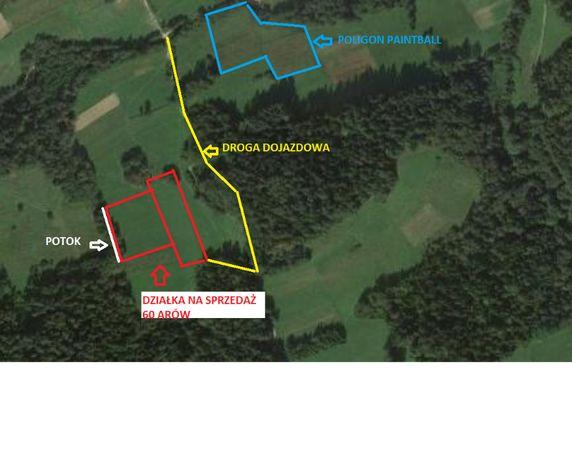 Działka rolna 60 arów Sidzina 100 metrów od Poligon Paitball
