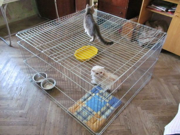 Манеж закрытый, вольер, клетка для собак кошек птиц 100х100х60h см