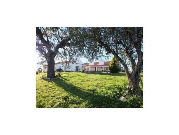 Quinta típica Alentejana em Foros de Vale Figueira | Mont...
