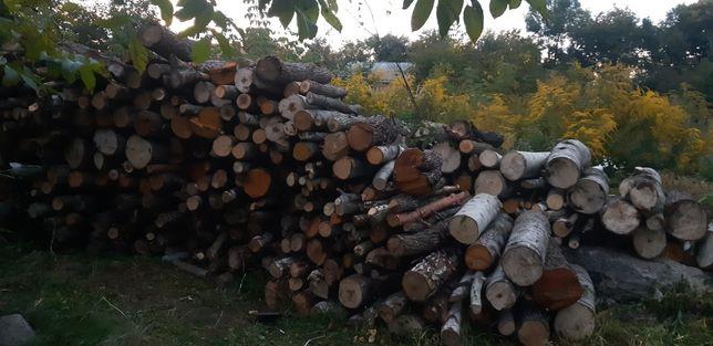 Продам дрова  твердих та мяких порід