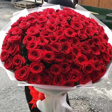 Она останется в восторге - букет 151 роза. Цветы, доставка, подарок