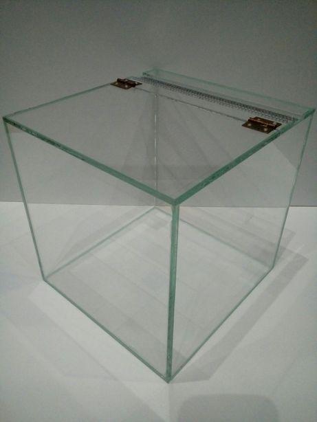 Terrarium szklane 20x20x20. Ptasznik, skorpion, modliszka.