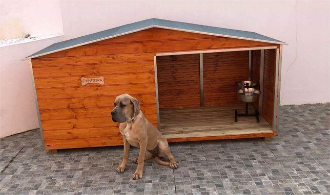 Casotas MSWood - Modelo Pandora para cães grandes/médios/pequenos