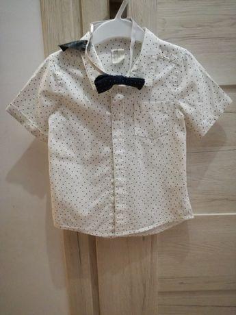 Koszula z mucha H&M r.80