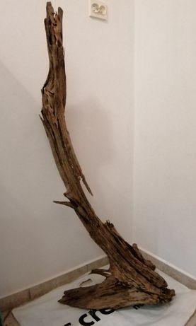 Korzeń mahoniowy do akwarium Duży XXXL