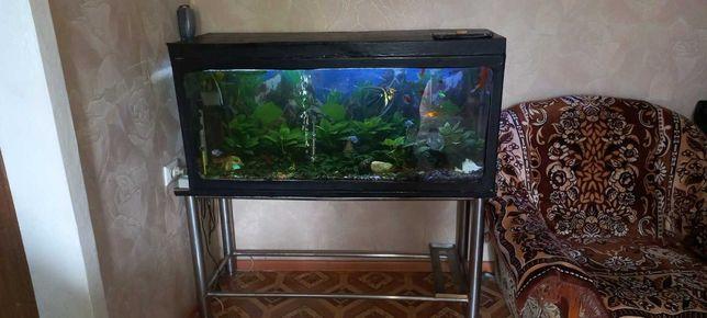 продам аквариум  торг