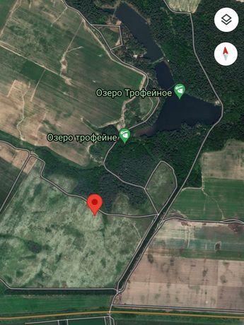 Продам земельный участок Неграши