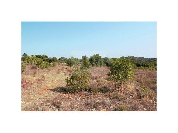Terreno Rústico com uma área de 4640 m2