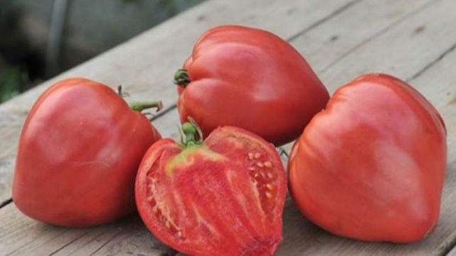 Pomidory przecier bezpośrednia konsumpcja