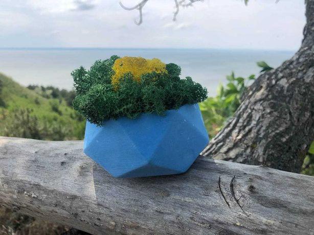 Кашпо для цветов. Стабилизированный мох в наличии!