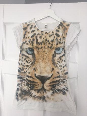 T-shirt koszulka tygrys biała