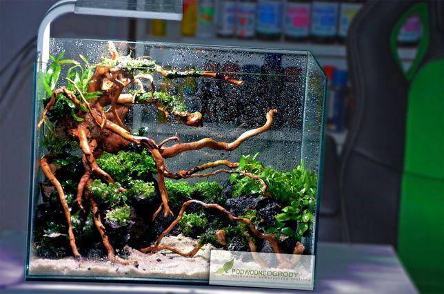 Korzenie do akwarium, gotowe akwarium z aranżacją
